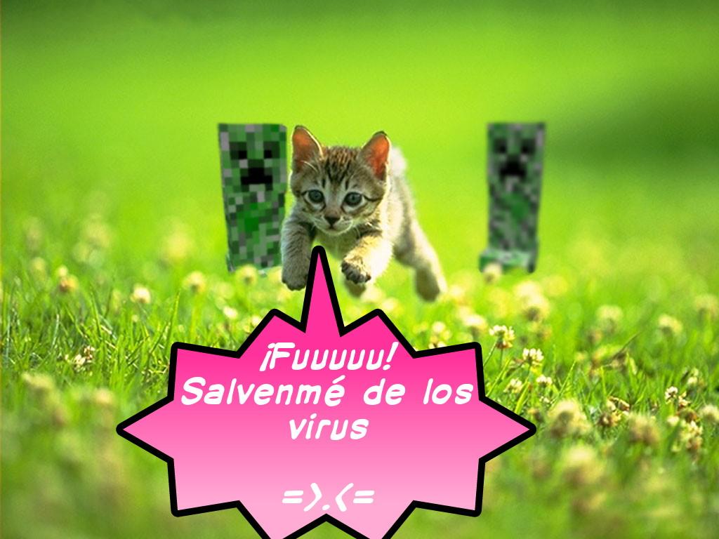 Https Slider Kigari Cyd 0001 2014 08 14t0149 Cat 5 Cable Wiring Diagram 13 T568b Emprendedor Save Me1 1