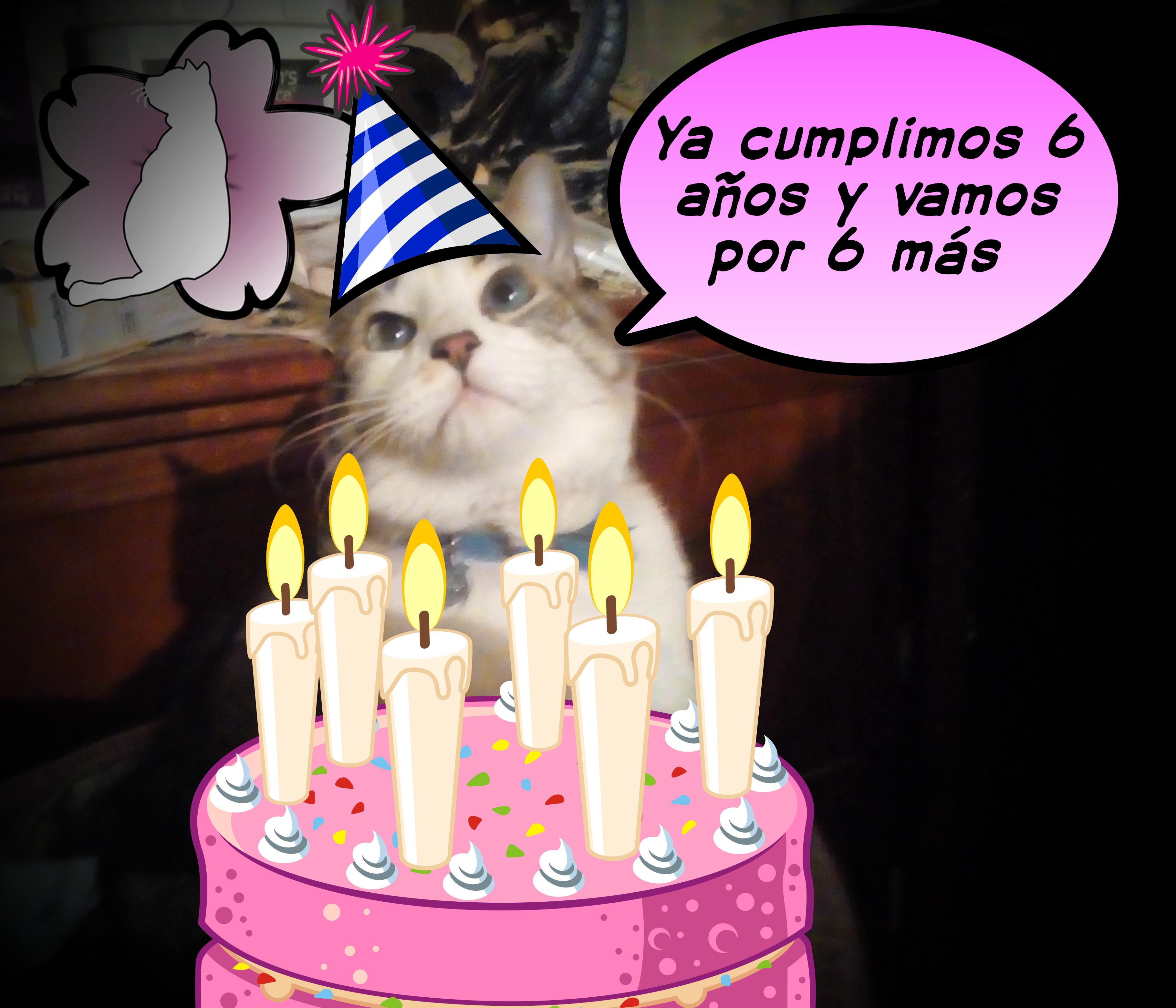 Cumpleaños número 6 de KiGaRi CyD